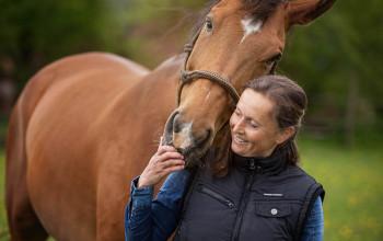 Dein Pferd – Dein Spiegel