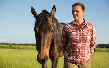 Therapie Mit Pferden Bei Hochsensibilität