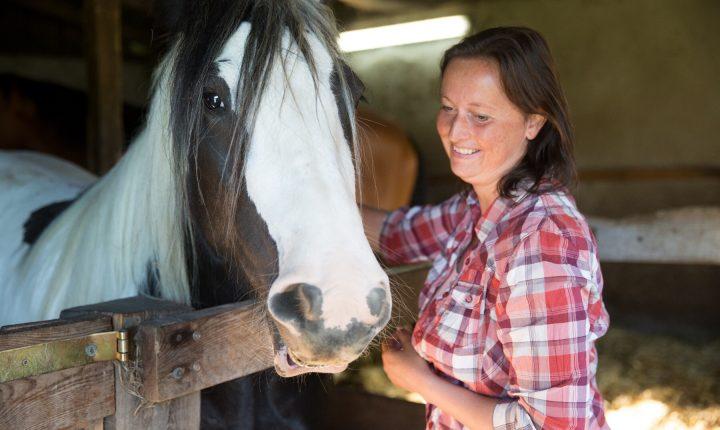 Therapie Mit Pferden Bei Sozialphobie